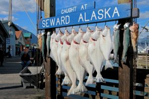 Moving to Seward, AK